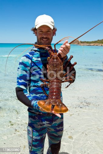 Captured by a free diver (i.e. snorkeler) near Dunsborough in Western Australia.  This is a pretty big specimen.  Nikon D80 with Nikkor AF-S 18-200mm lens.