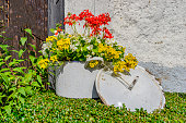 .Large white cooking pot with lid planted with flowers