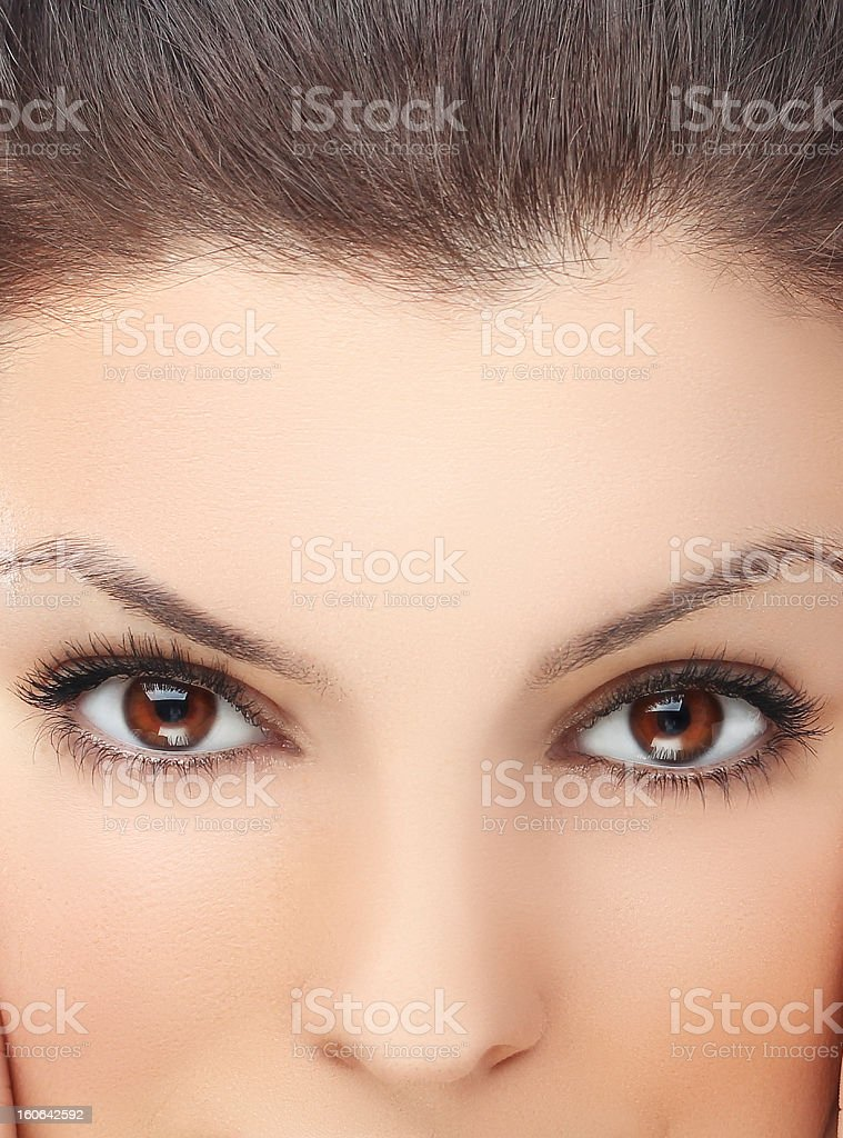 Lashes.Close up shot of  woman's eyes with long lashes royalty-free stock photo