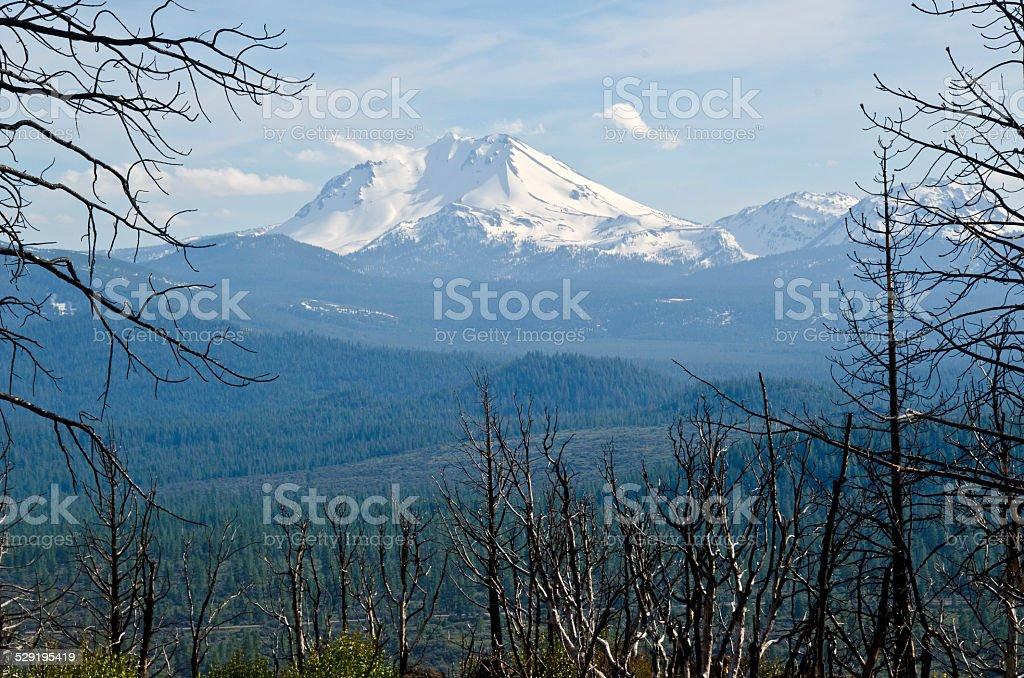 Lassen Peak Burn Site View stock photo
