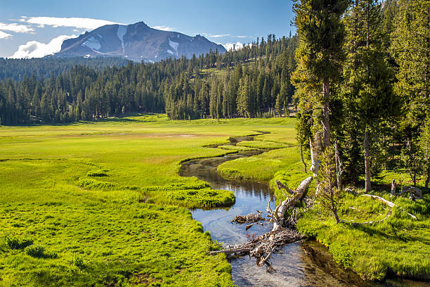 Lassen Volcanic Meadow Peaceful meadow in the wilderness of Lassen Volcanic National Park, California volcanic landscape stock pictures, royalty-free photos & images
