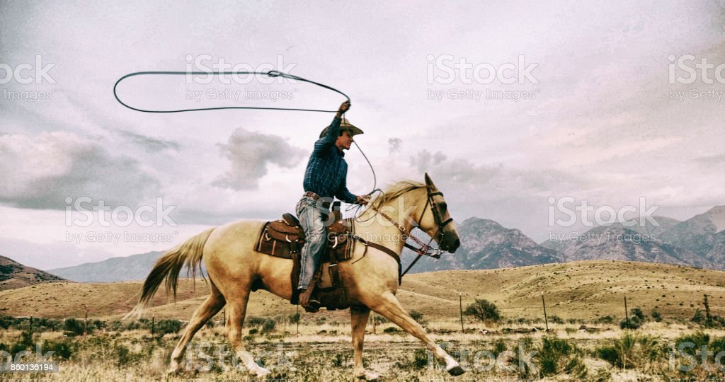 Lasso Cowboy - Photo