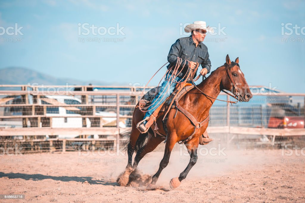 Lassoing in rodeo arena stock photo