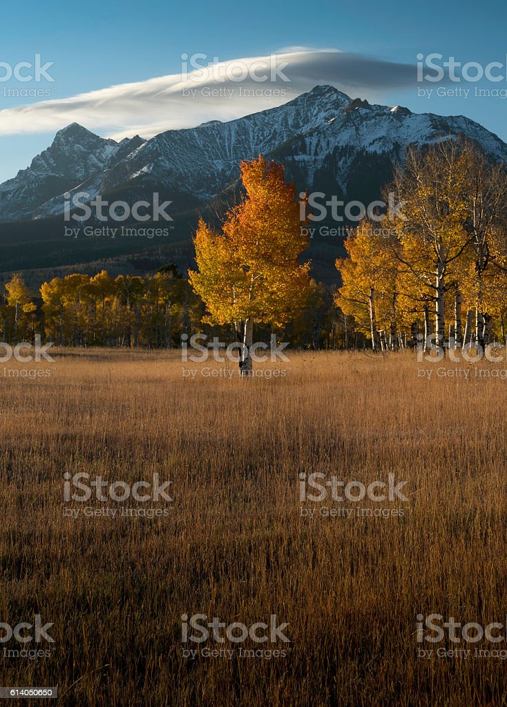 Last Dollar Road Fall Color stock photo