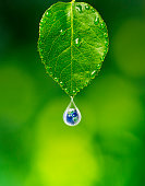 Earth in water drop under green leaf, Elements of this image furnished by NASA