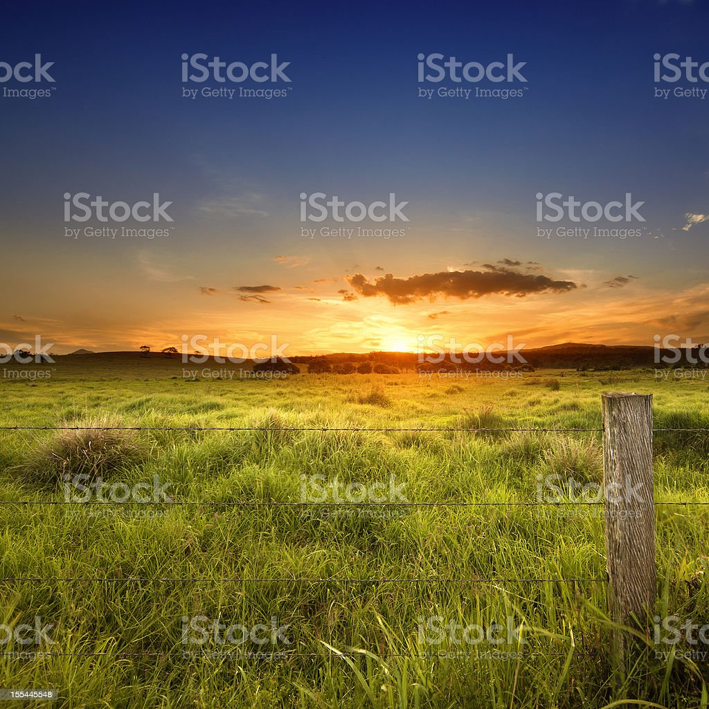 Last light over field royalty-free stock photo
