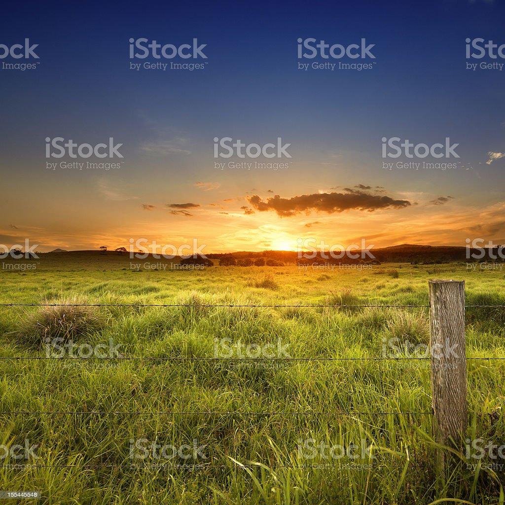 Last light over field stock photo