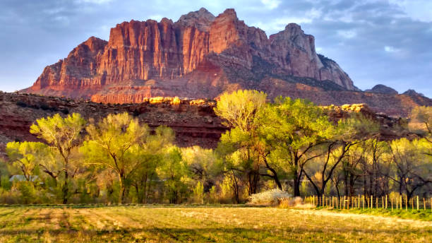 Last rays of sunset light against peaks in Zion as seen from Rockville Utah looking across grass pasture fields toward Mount Kinesava Last rays of sunset light against peaks in Zion as seen from Rockville Utah looking across grass pasture fields toward Mount Kinesava cottonwood tree stock pictures, royalty-free photos & images