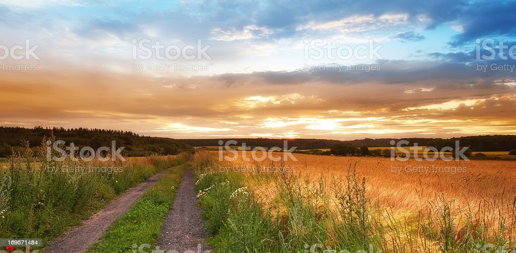 Last rays of the day... stock photo