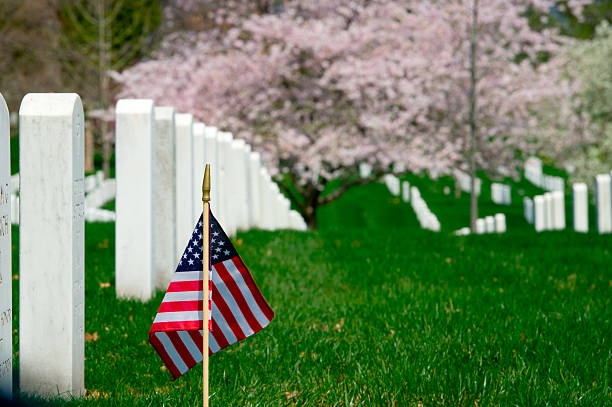 last stand - arlington national cemetery stock pictures, royalty-free photos & images