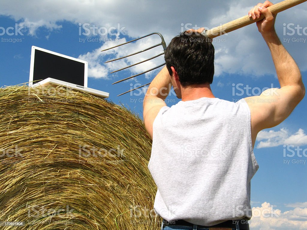 Last Straw: Man with Pitchfork Attacks Laptop Computer on Haystack royalty-free stock photo