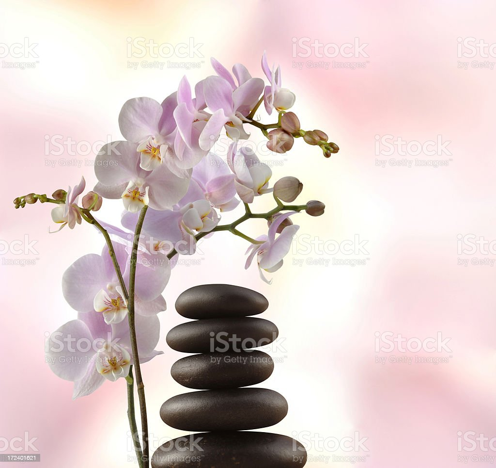 Lastone and Orchid royalty-free stock photo