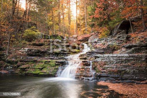 Landscape showing autumn foliage