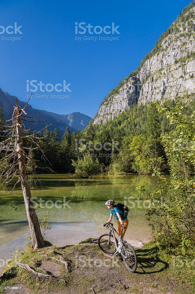 Late afternoon bike brake royalty-free stock photo