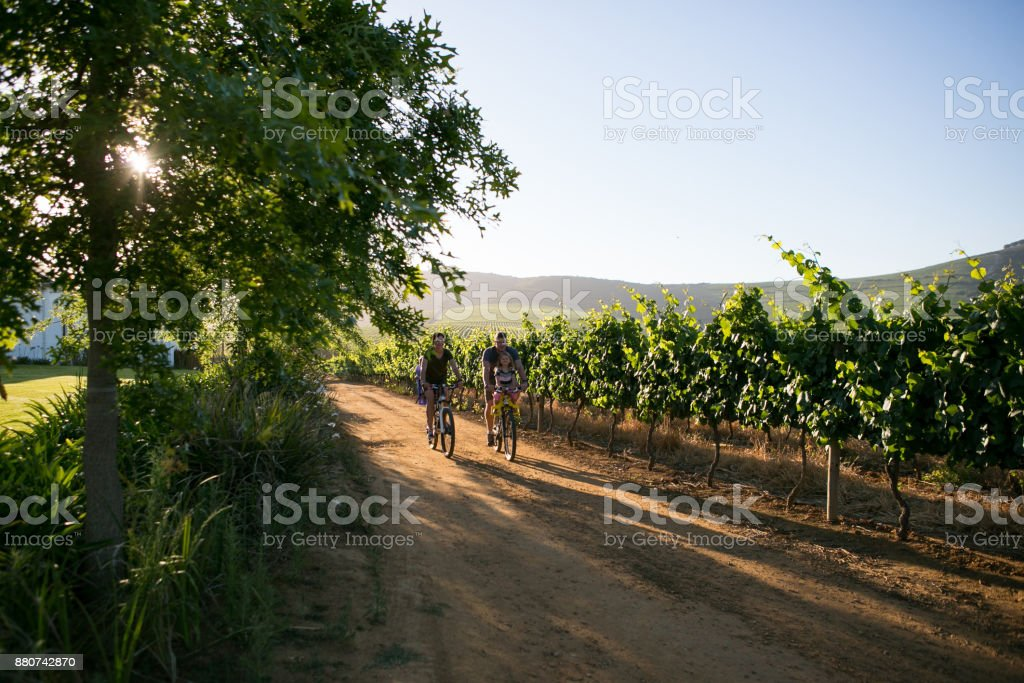 Late afternoon family cycle stock photo