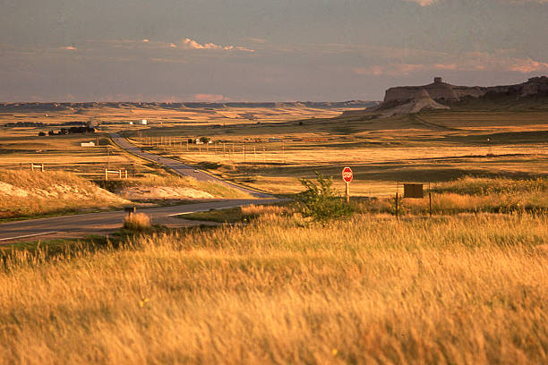 late afternoon light prairie steppes country road of western nebraska - great plains stock photos and pictures