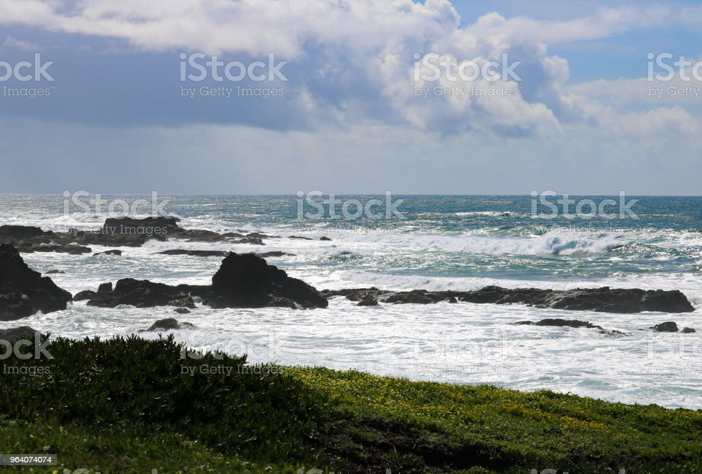 Late Afternoon on the Pacific Coast - Royalty-free Beauty In Nature Stock Photo