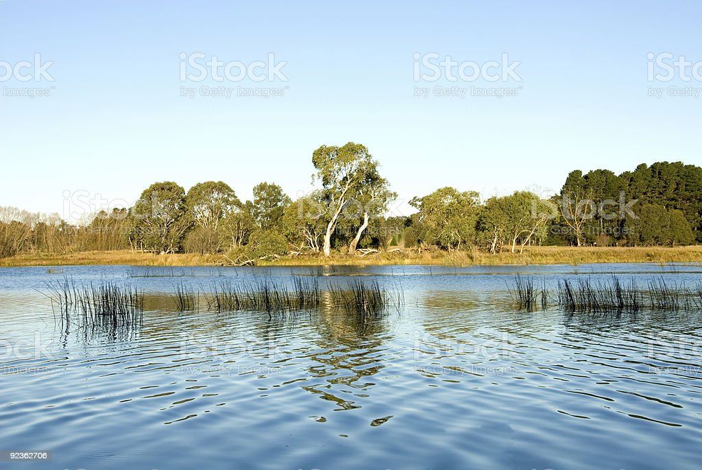 Late Afternoon on the Wingecarribee River royalty-free stock photo