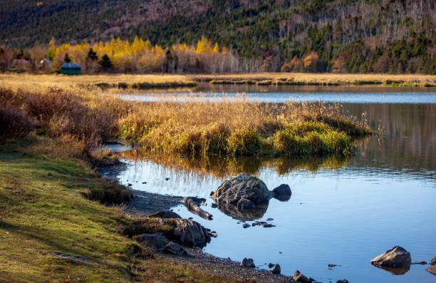 Paysage d'automne tardif de Long Pond, Saint-Jean, Terre-Neuve et Labrador - Photo