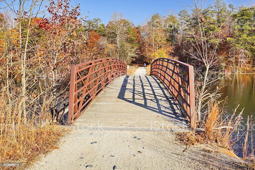 Late Fall on the recreational trail, North Carolina stock photo