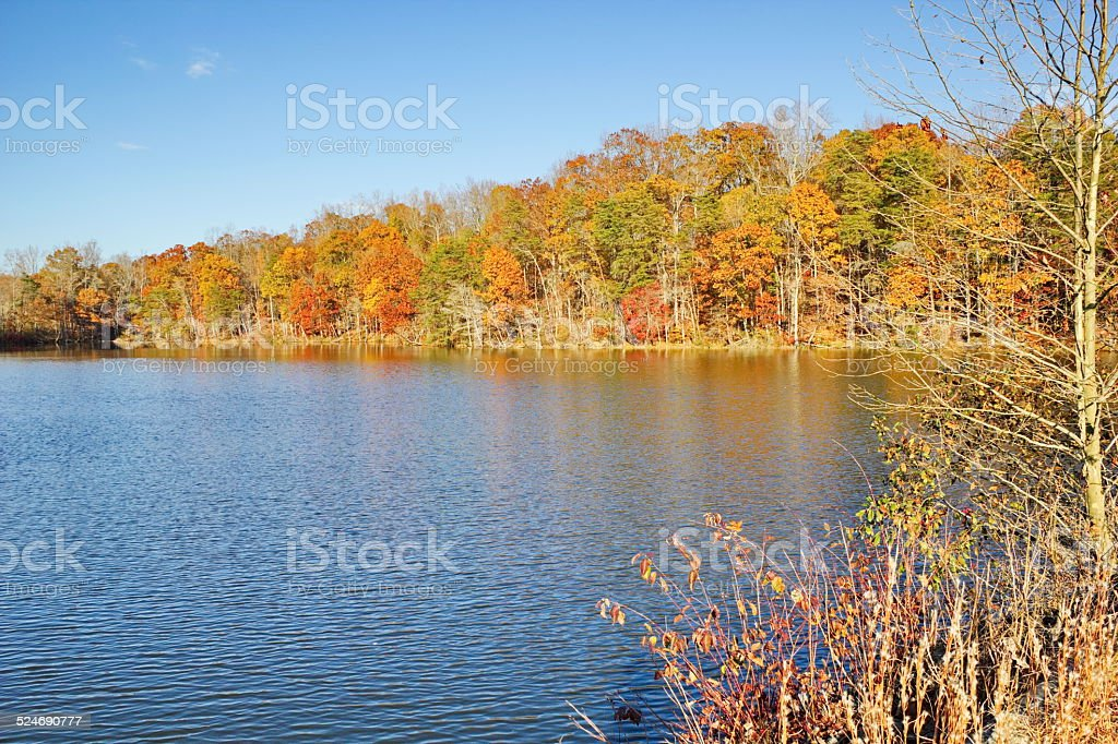 Late Fall Views around Salem Lake, Kernersville, NC. royalty-free stock photo