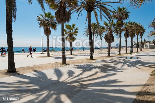 Barcelona, Catalonia, Spain - April 28, 2017: Bright sunlight is shining on palmtrees at Passeig Maritim del Bogatell, creating large shadows on the pavement. People are enjoying the place by walking their dog, cycling, running or sitting on a bench looking over Platja del Bogatell (Bogatell's beach) and the Mediterranean Sea. In the distance the building of Hotel W, at the far end of neighborhood Barceloneta, can be seen.