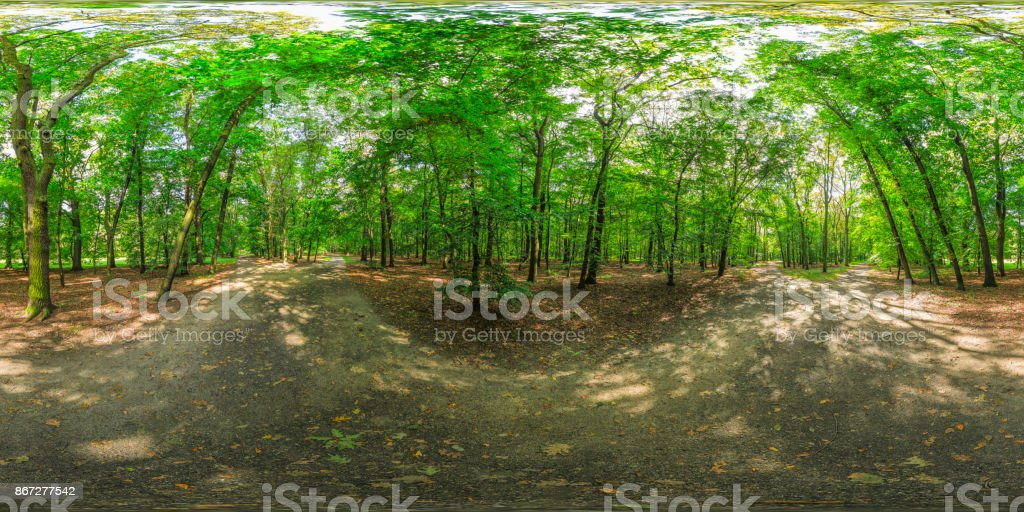 late summer afternoon in a park (360 degree HDRi panorama) stock photo