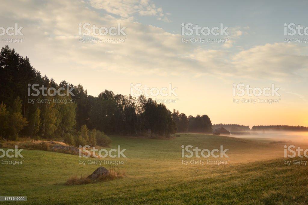 Sensommar höstlandskap och vacker natur i Sverige - Royaltyfri Fotografi - Bild Bildbanksbilder