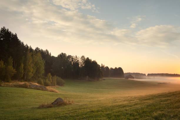 Sensommar höstlandskap och vacker natur i Sverige bildbanksfoto