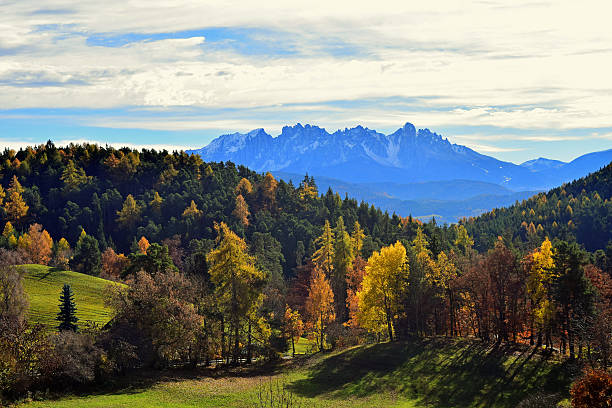 latemar mountain in autumn - latemar foto e immagini stock