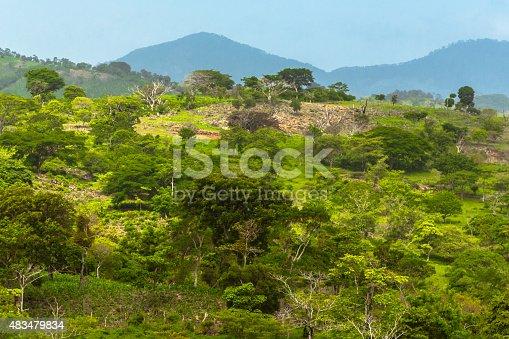 Latin American Landscape