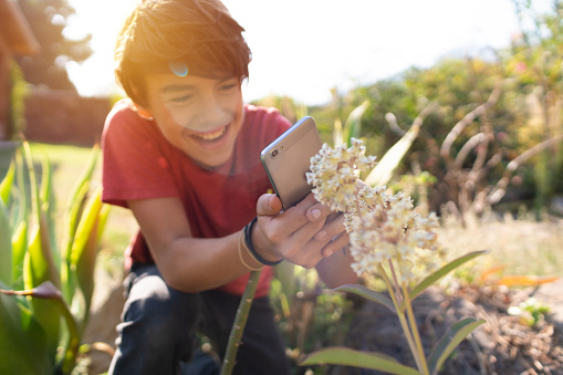 Latinx pre-adolescent child cheerfully photographing plants in his garden with a smartphone