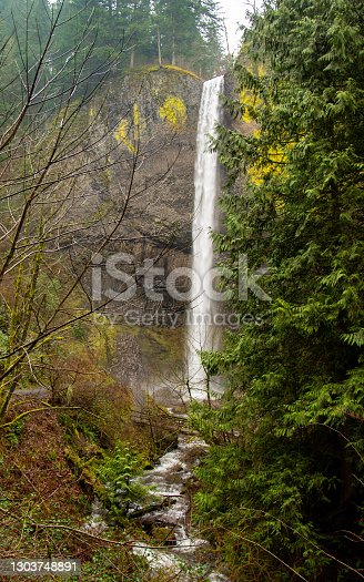 Latourell Falls can be seen along the Historic Columbia River Highway in Oregon