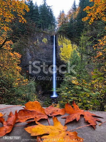 autumn leaves with a waterfall in the Pacific Northwest