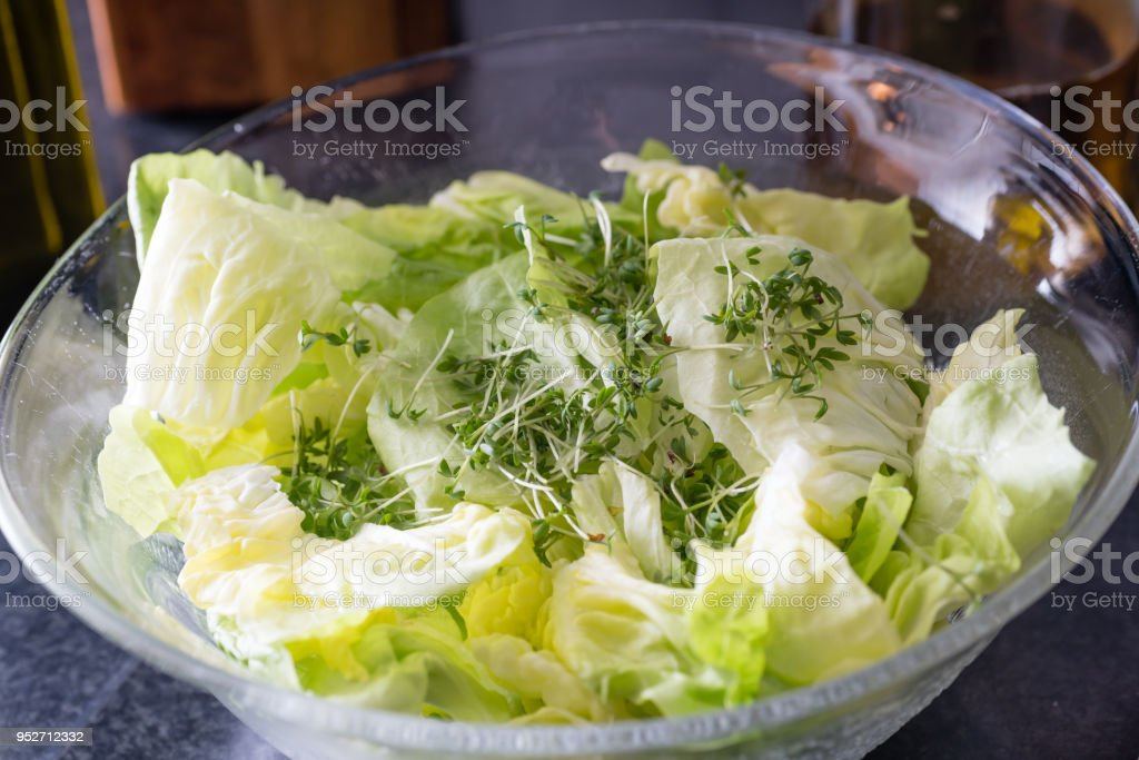 Lattuce in a bowl stock photo