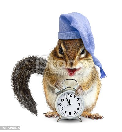 istock laughable animal chipmunk with clock and sleeping cap 654068628