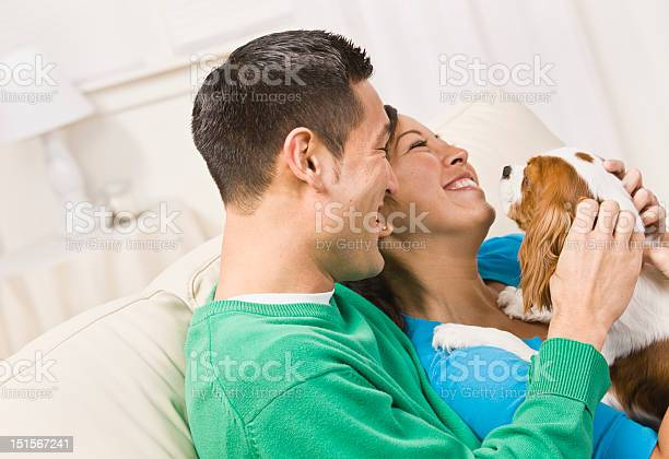 Laughing couple holding dog picture id151567241?b=1&k=6&m=151567241&s=612x612&h=nthgr tg2lmfvii4e3 2928z8 q1w6cqbmo7sg8ocby=