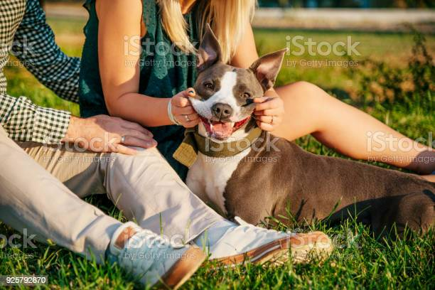 Laughing dog picture id925792670?b=1&k=6&m=925792670&s=612x612&h=k0knpg vkjfsfjaklk6k8ley apwfzhs92pjdb3zacw=