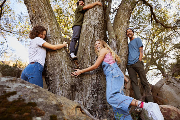 laughing group of diverse friends hugging a tree together outdoors - ambientalista foto e immagini stock