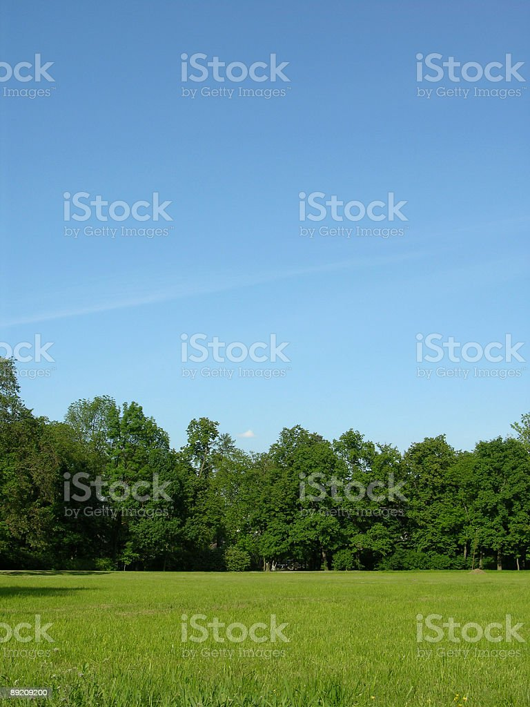 Riant landscape royalty-free stock photo