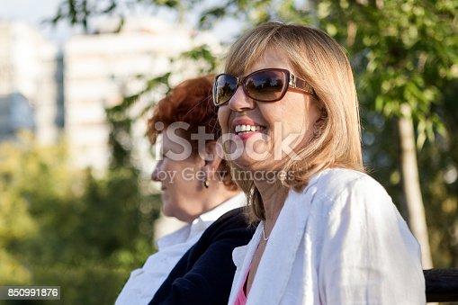 istock Laughing seniors sitting in park 850991876