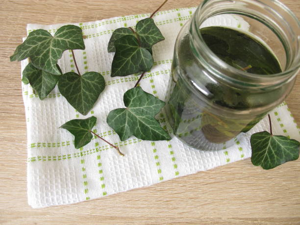 Laundry detergent or dishwashing liquid from ivy leaves stock photo