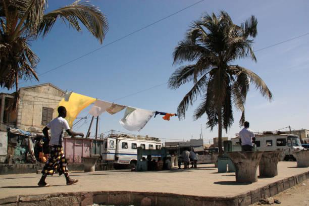 laundry drying on a washing line between two palm trees in saint-louis-du-sénégal - st louis стоковые фото и изображения