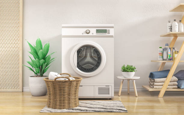 Laundry room with white wall,wooden floor and flowers. 3d illustration stock photo