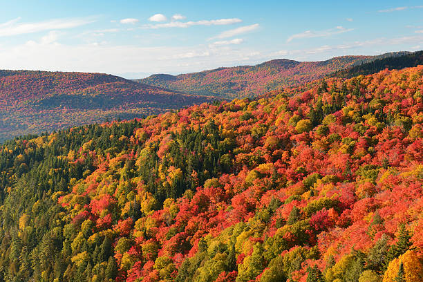 Laurentian Mountains in Autumn