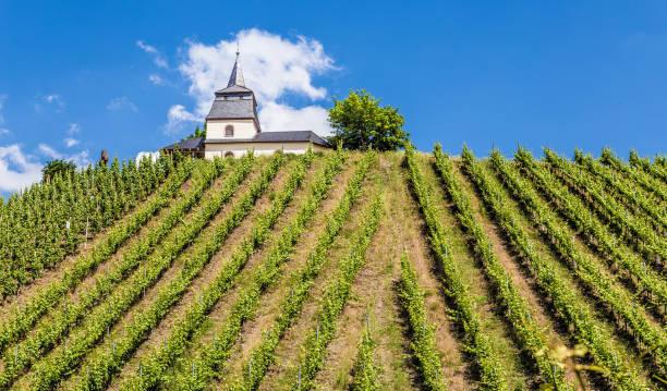 Laurentiuskapelle in Trittenheim an der Mosel Rheinland-Pfalz Deutschland – Foto