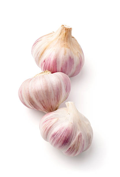 Lautrec garlic on white stock photo