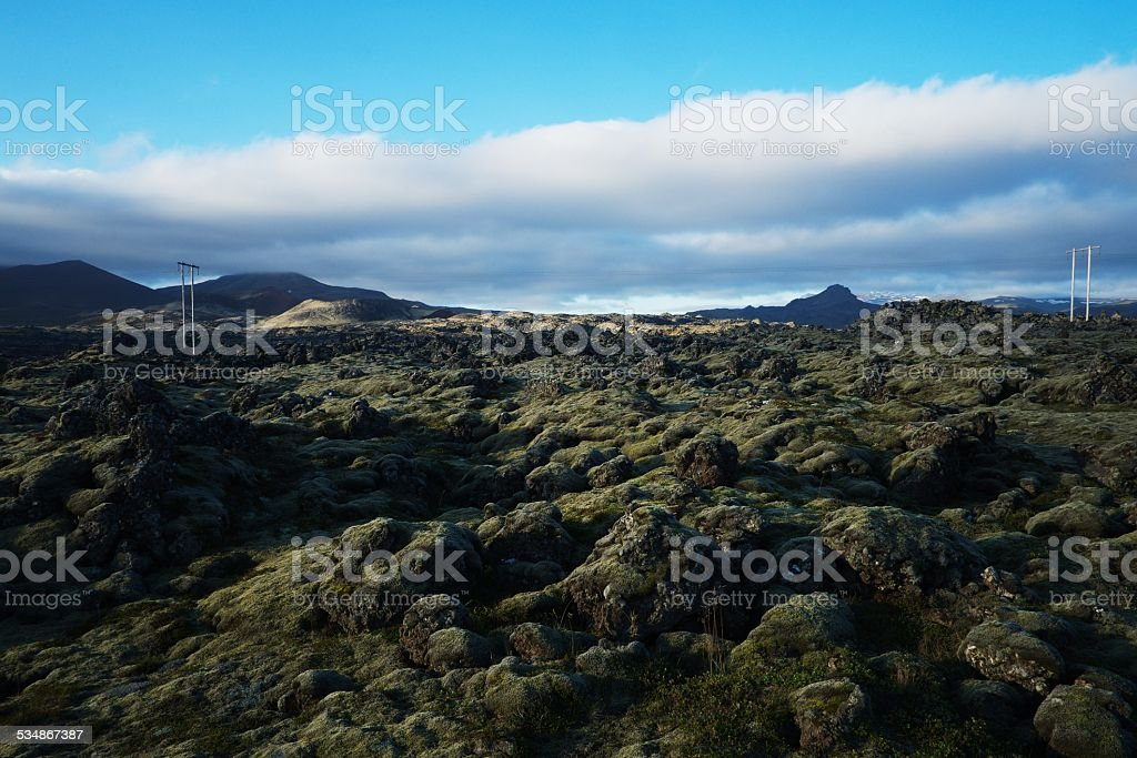 Lava field in Iceland stock photo