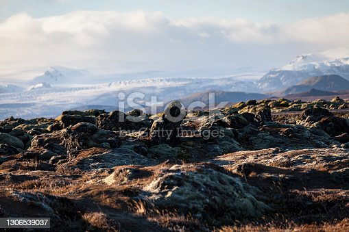 lava field with glacier mountain range in the background. southern iceland.