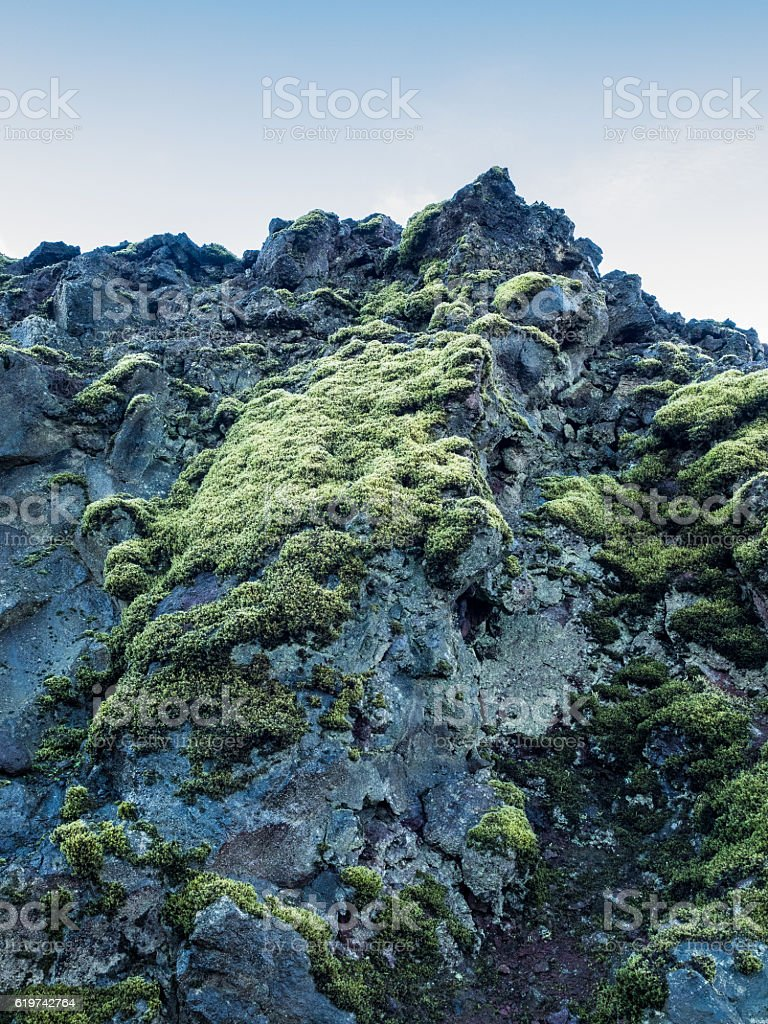 Lava Rock and Green Moss in Iceland stock photo